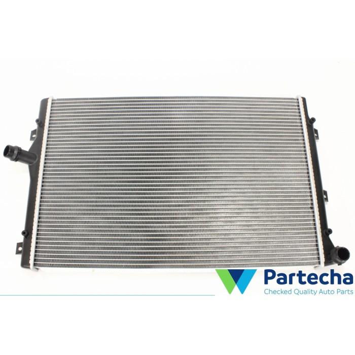 VW PASSAT ALLTRACK (365) Radiator, engine cooling (1K0 121 251 AB)